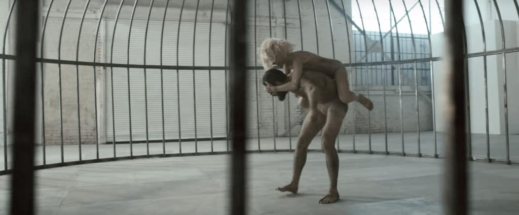 Смысл клипа Sia - Elastic Heart