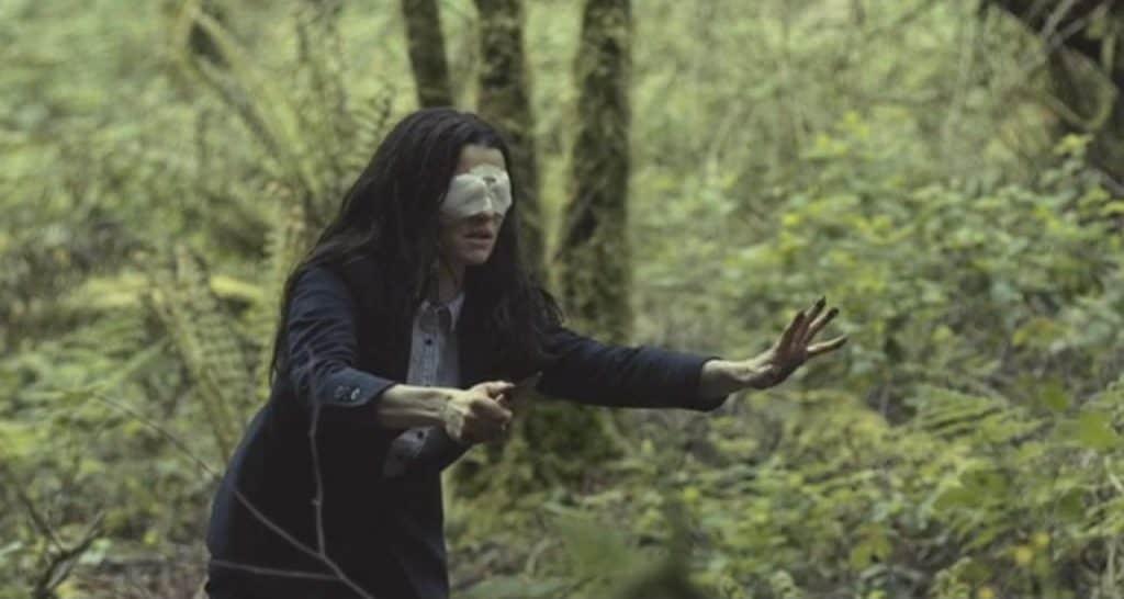 Смысл фильма Лобстер (2015) и объяснение концовки