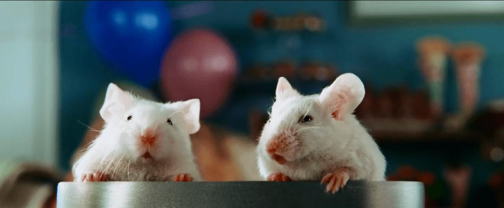 В финале фильма главному герою приходится сражаться с двумя белыми мышками